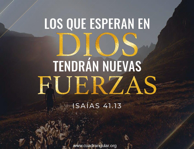 Los que esperan en Dios tendrán nuevas fuerzas