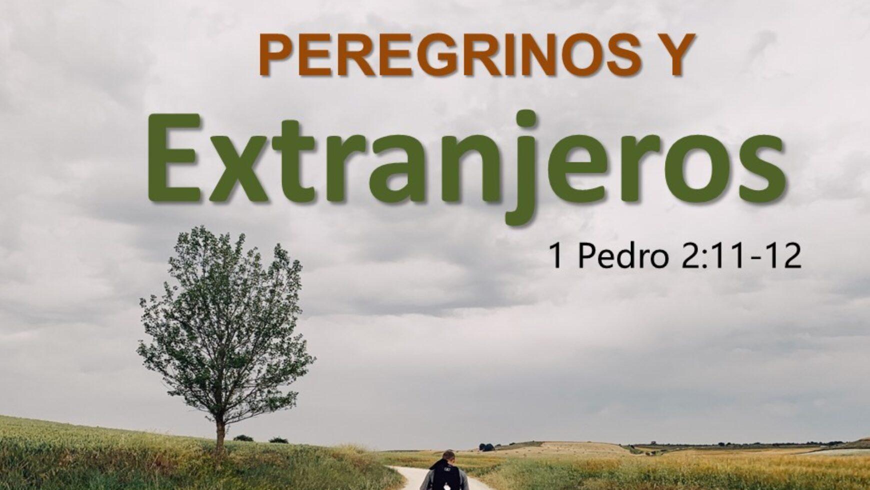 Peregrinos y extranjeros