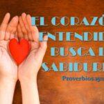 El corazón entendido busca sabiduría