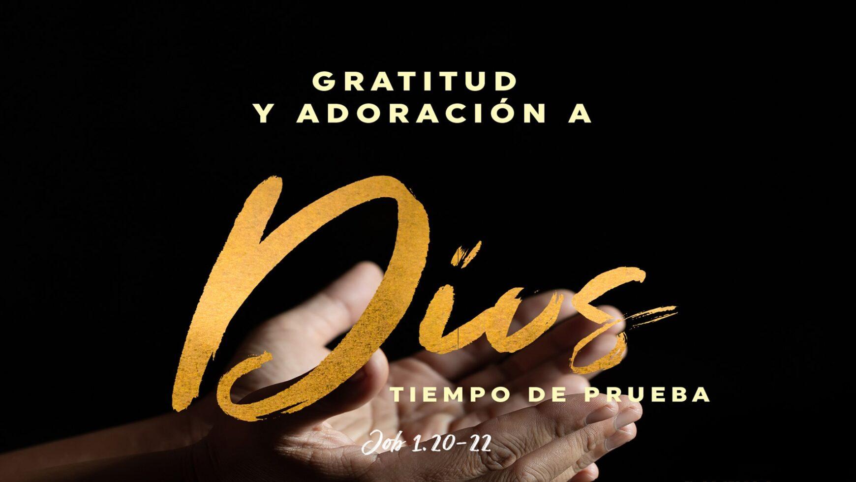 Gratitud y adoración a Dios en tiempos de prueba